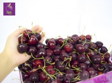 Cherry Super Big - Cherry New Zealand